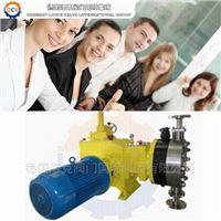 进口液压隔膜计量泵(知名品牌)
